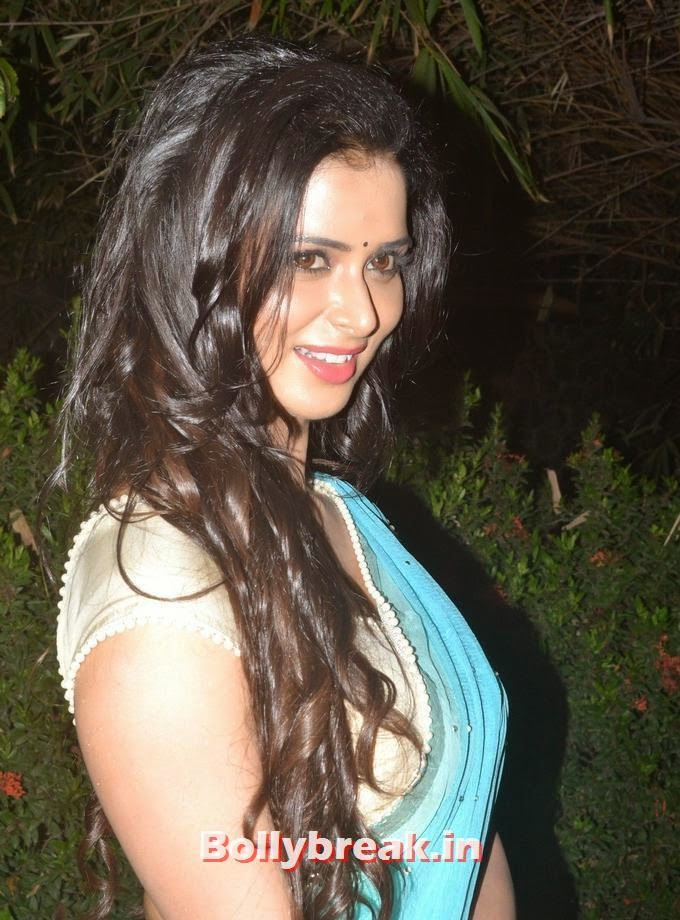 , Meenakshi Dixit Pics in Saree - Beautiful Actress