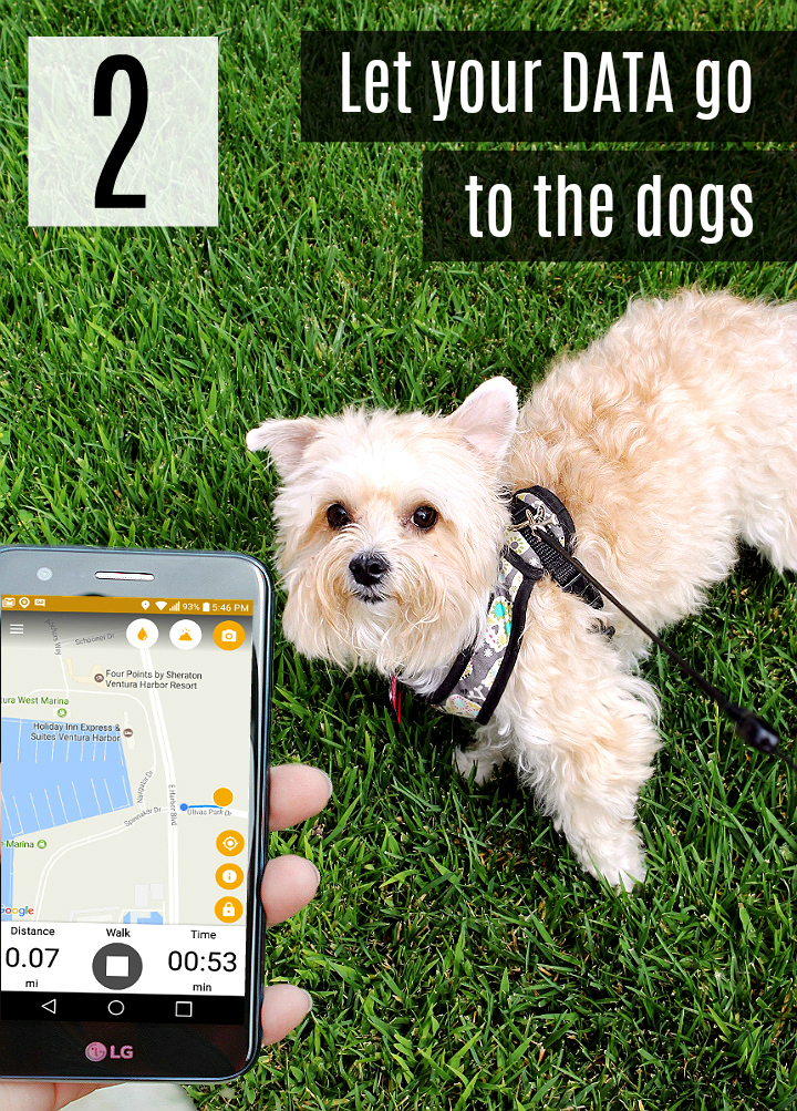 Put your smartphone's data to good use and find local boarding kennels, dog walkers, puppy playdates, and more! Download the DogWalk app to track and map your dog's walks and discover other pups hangouts! #SummerIsForSavings #WFM1 #AD