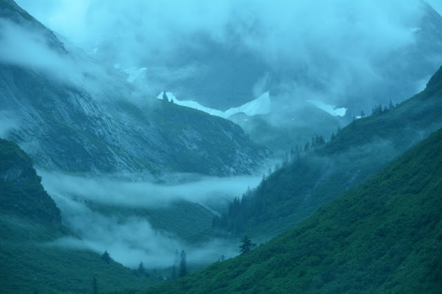 Tracy Arm fog