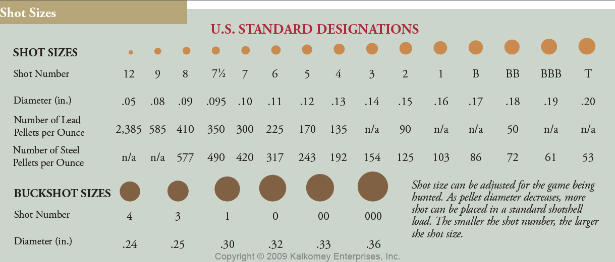 Ammo and Gun Collector: Shotgun Shell Shot Size Comparison ...