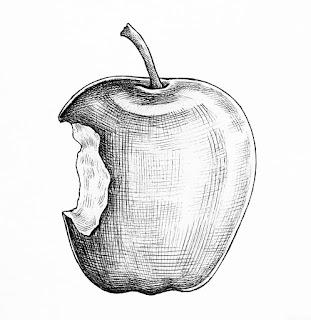 Sketsa Buah Apel
