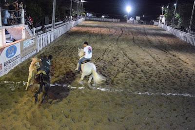Pedra Branca-Ce: VI Vaquejada do Parque Guarani terminou na manhã desta segunda (11). Confira os campeões