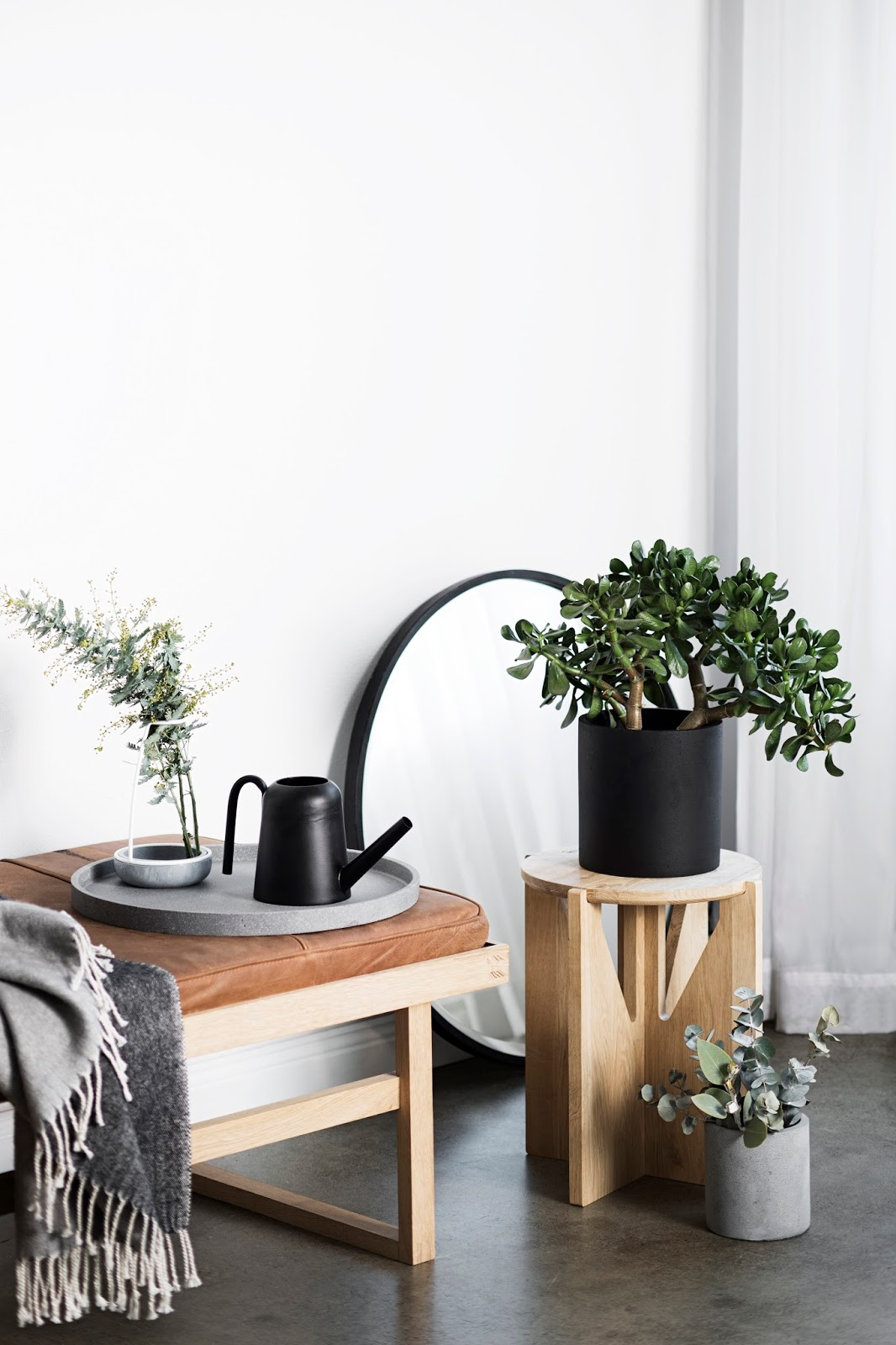 Black Watering Can by Zakkia | Cleo-inspire