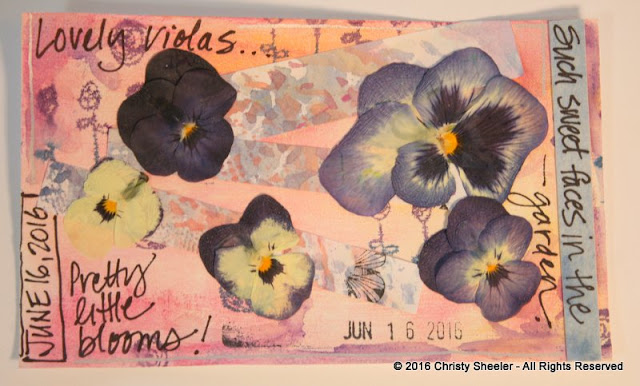 ICAD June 16, Pressed violas on a gesso, chalk and stamped background.