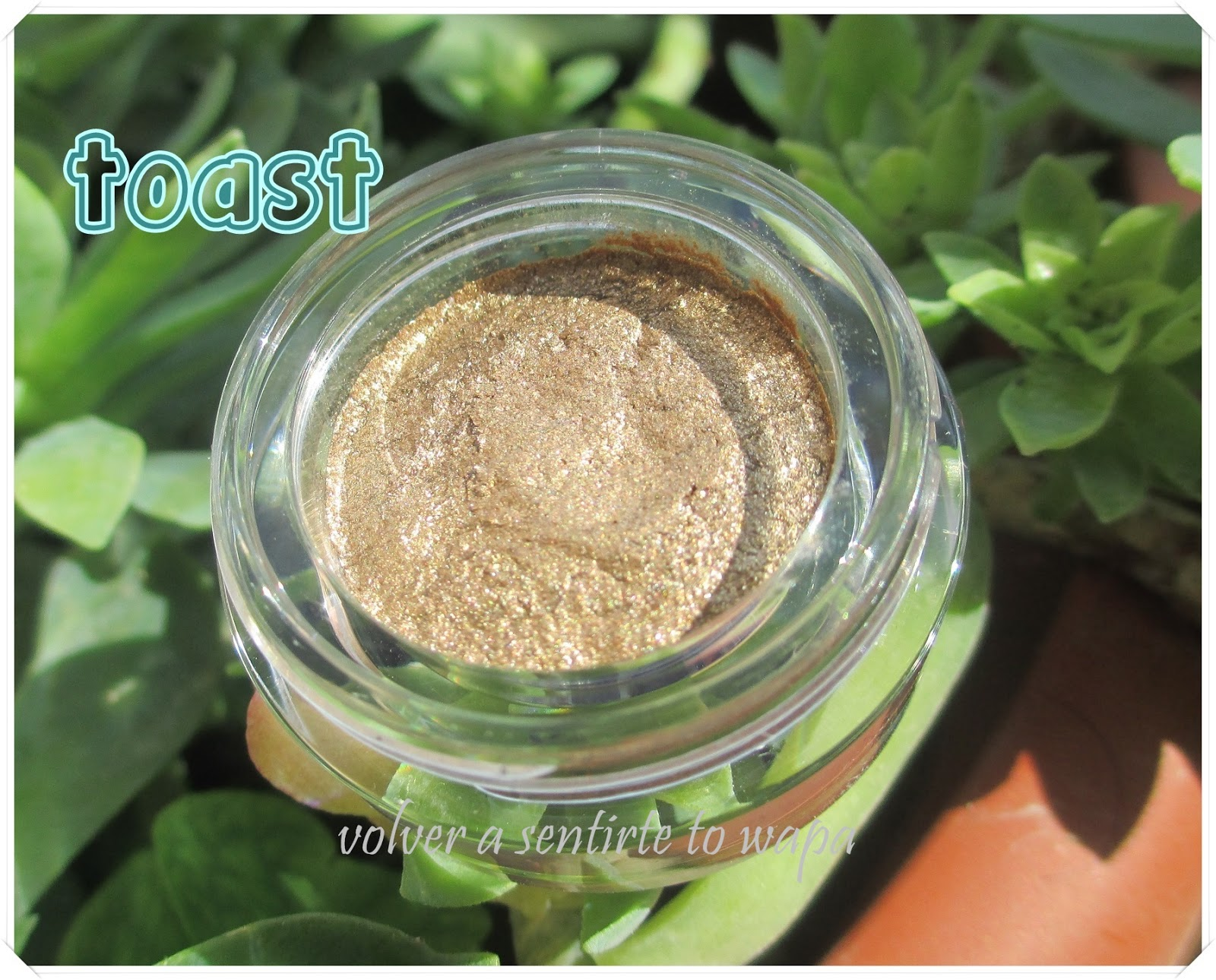 Long-lasting lustrous eyeshadow de elf - Toast