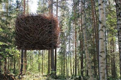 casitas impactantes del arbol