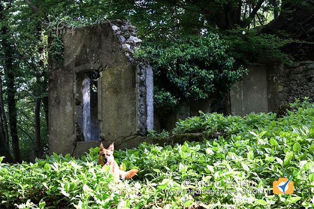 I resti della caserma, bombardata dai tedeschi