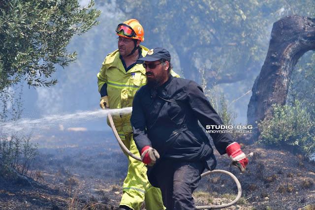 Αφιέρωμα του MEGA στον ρασοφόρο πυροσβέστη της Αργολίδας (βίντεο)