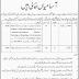City District Government Peshawar Jobs