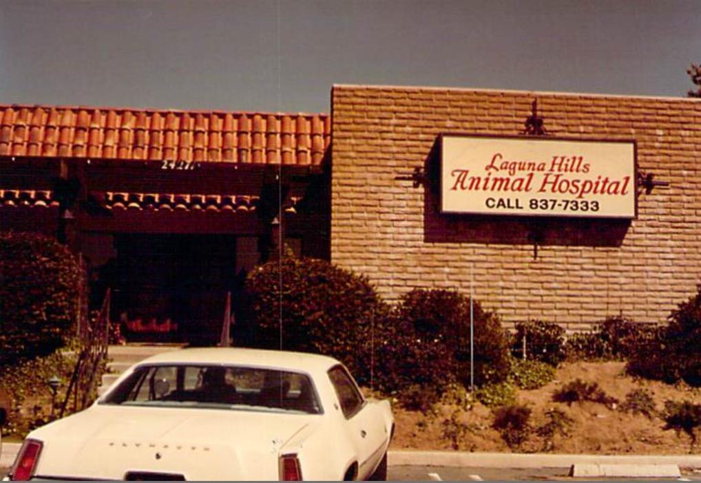 Laguna hills animal hospital happy 50th anniversary to for King s fish house laguna hills