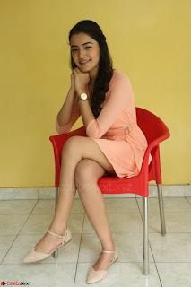 Rukshar Mir in a Peachy Deep Neck Short Dress 071.JPG