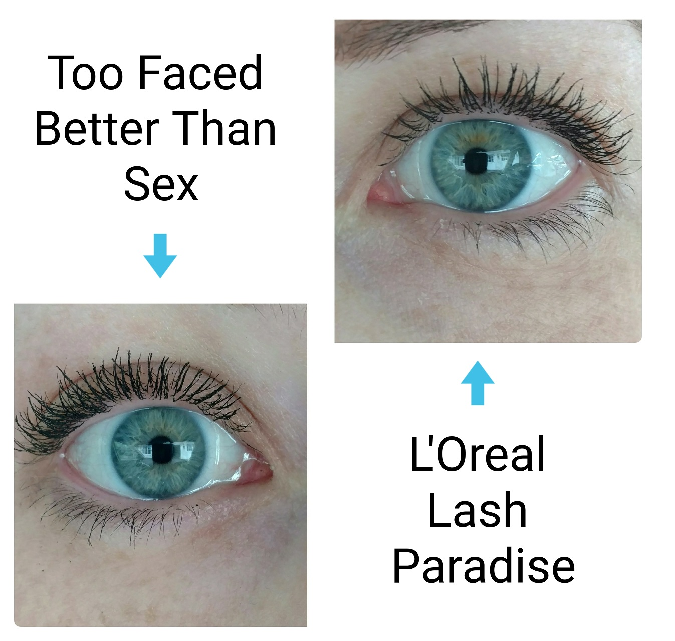 loreal lash paradise vs too faced better than sex