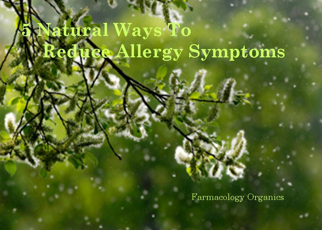 Natural Ways To Alleviate Allergies