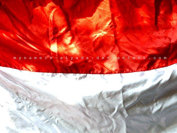 Image Result For Wallpaper Merah Putih