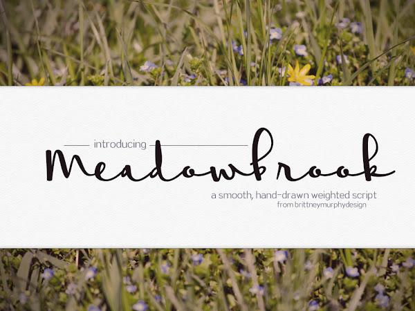 Meadowbrook Script Font Free Download