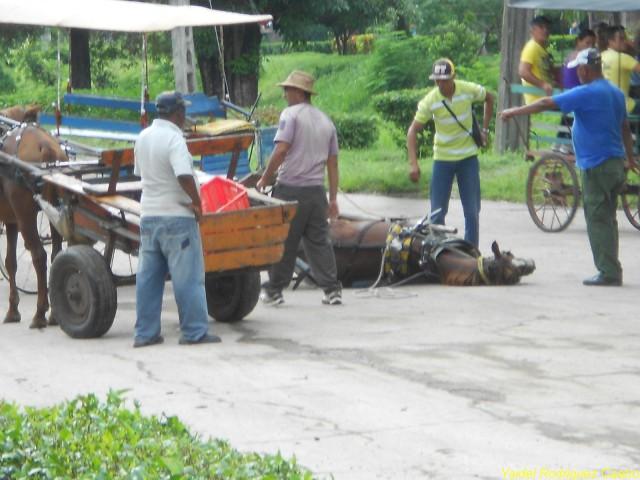 Más conciencia, menos accidentes en Jobabo