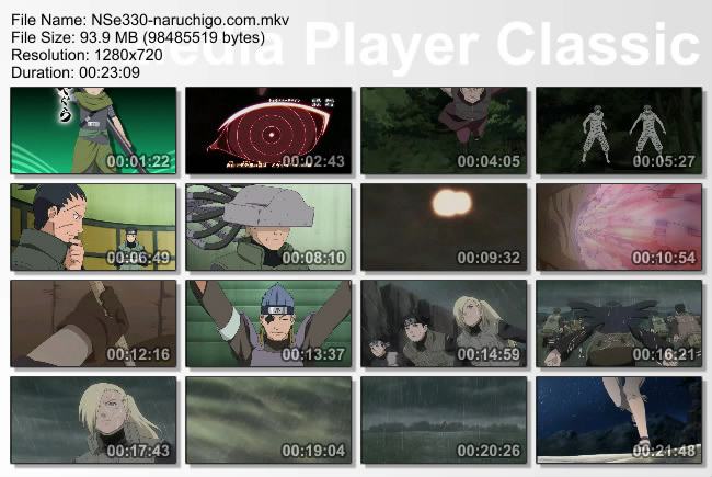 Naruto Shippuden Episode 330 English Sub