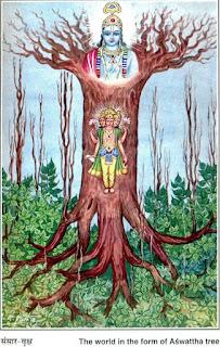 Ashwatta hinduistischer Weltenbaum, Baum des Lebens