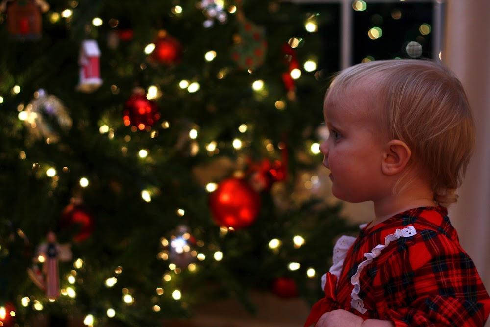 toddler next to tree