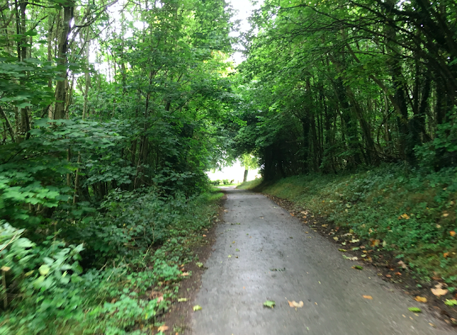 FitBits | Cycling the South Downs Way - Petersfield to Amberley
