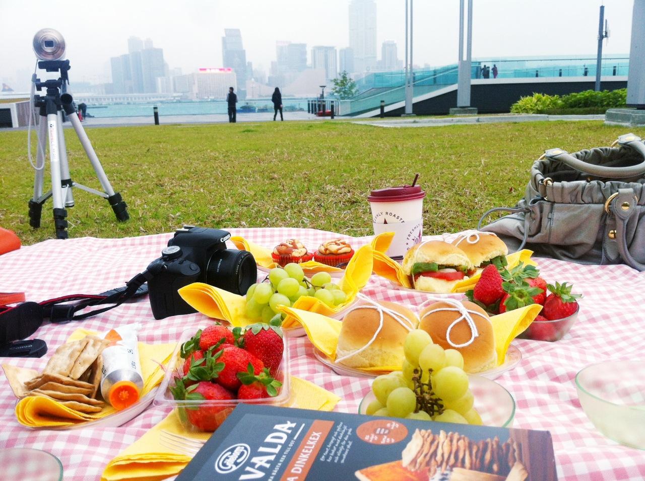 hong kong picnic tamar park