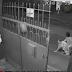 MUST WATCH : SAPUL SA CCTV, LOLA NABIKTIMA NG RIDING IN TANDEM SA HARAP NG BAHAY NYA!!!