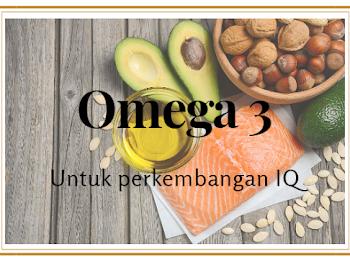 Omega 3 Untuk Menyokong Perkembangan IQ