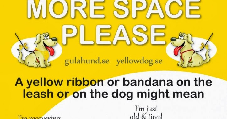 silvieon4: Are YOU done yet? Let's address the YELLOW RIBBON