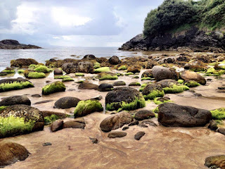 Mossy stones on Fintra Beach, County Donegal