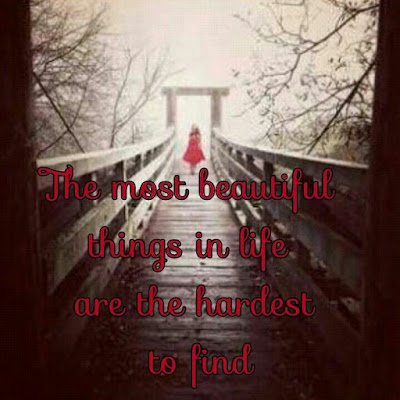 the most beautiful things in life are the hardest to find.