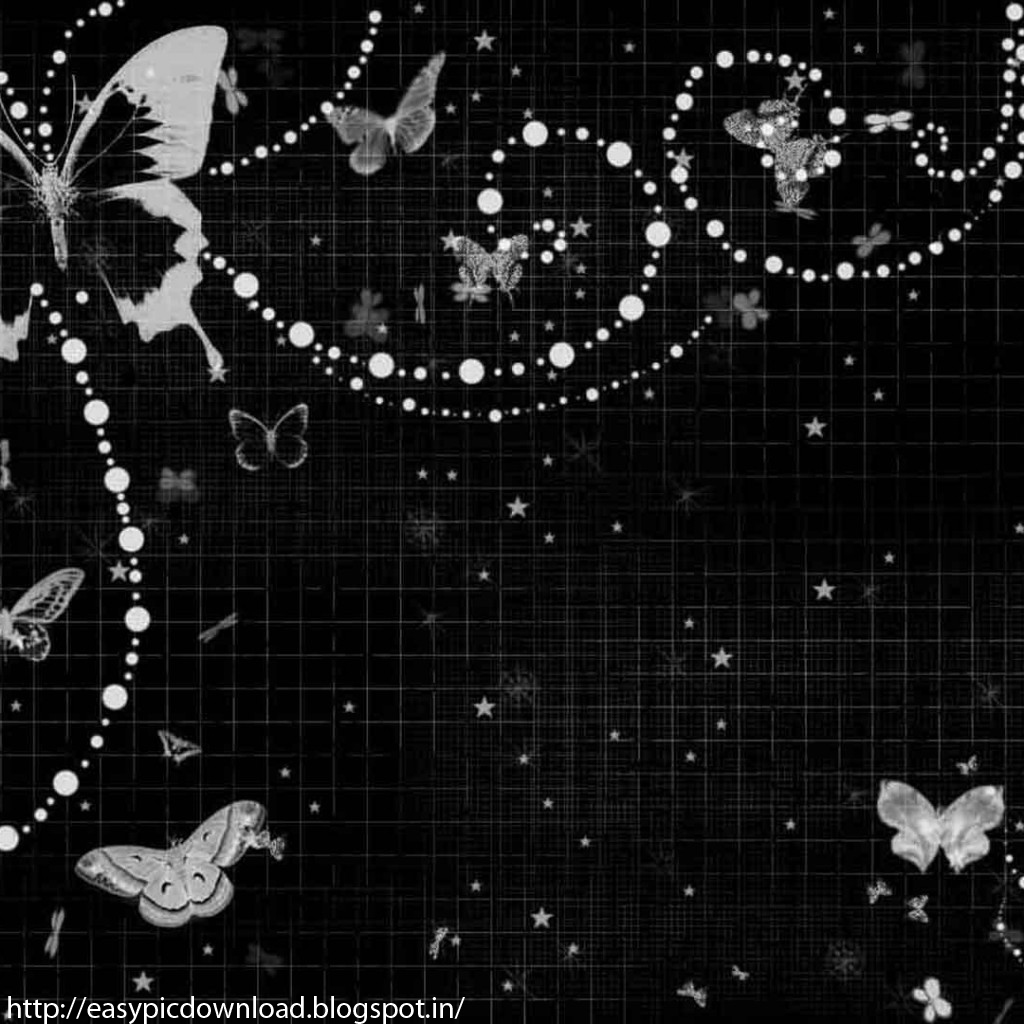 Black Butterfly Wallpaper Mega Wallpapers
