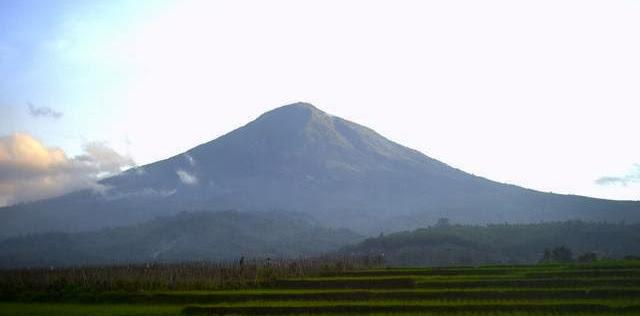 Info Gunung Cikuray Terbaru