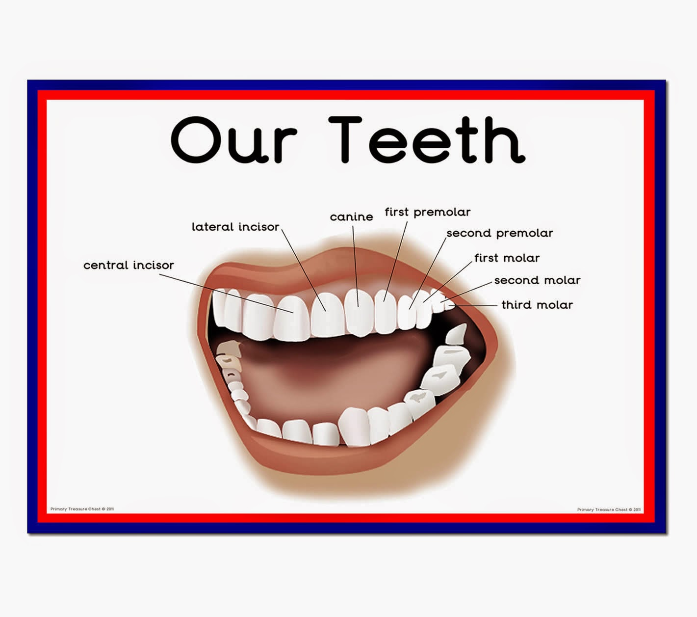My Piece Of Mind Dental Services Amp Care Needed For