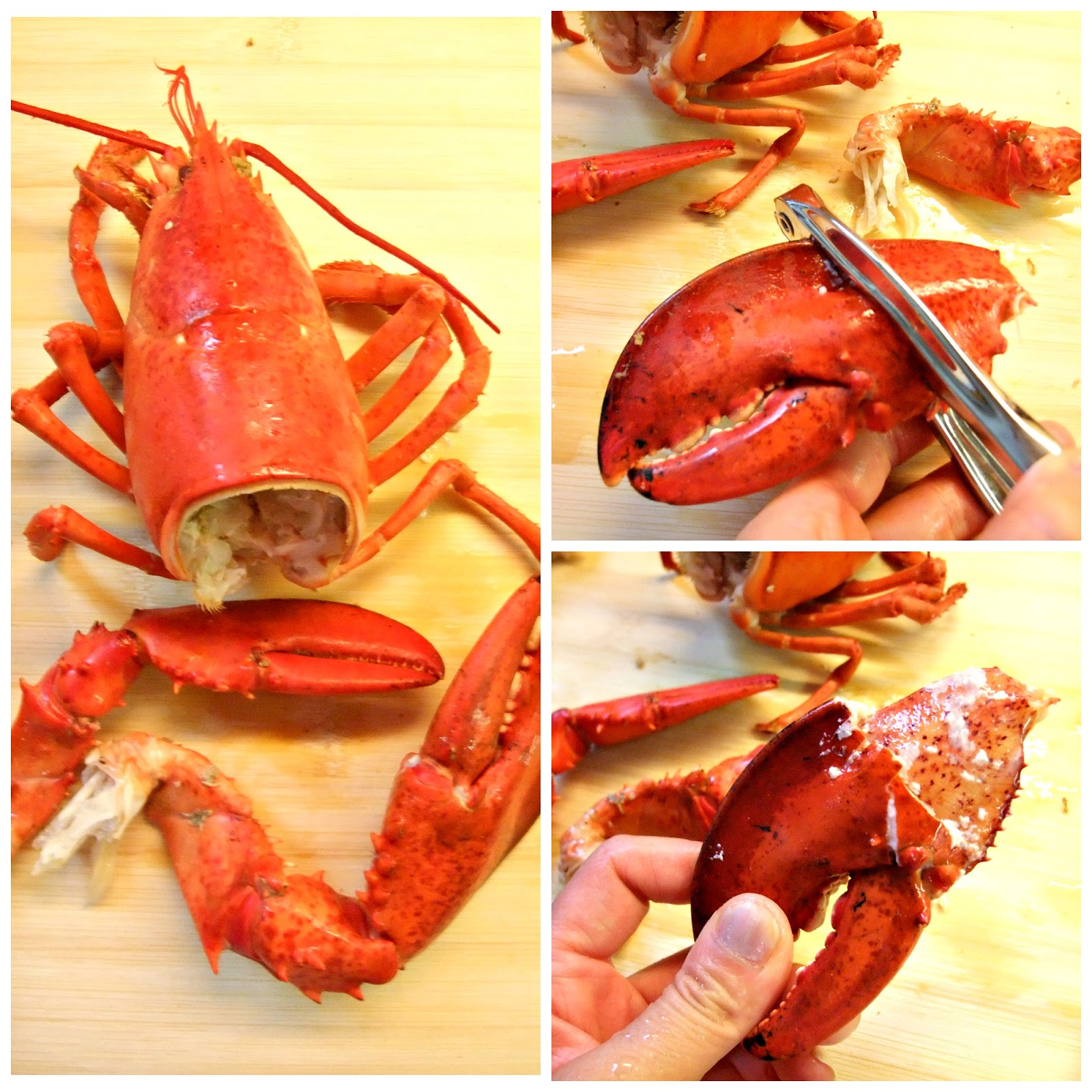 Susan's Savour-It!: The Classic Lobster Roll...
