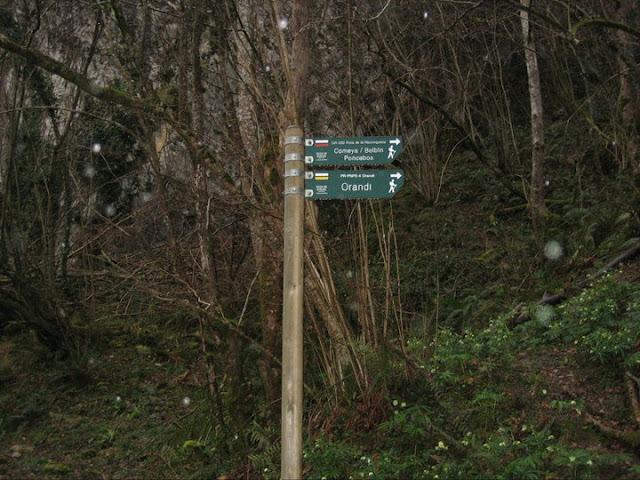 Rutas Montaña Asturias: Llegando a Covadonga