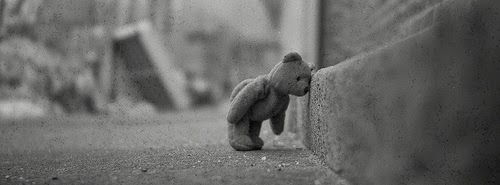 Tiny-little-tessy-bear-feeling-so-sad-cute-facebook-cover-image-photography.jpg