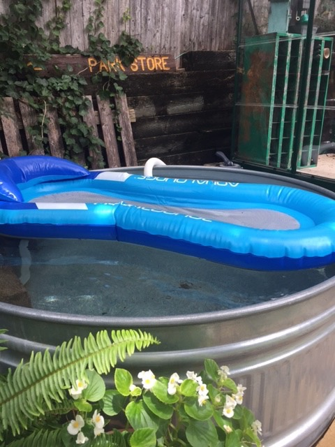 Let 39 s add sprinkles new pump for our stock tank pool - How to filter a stock tank swimming pool ...