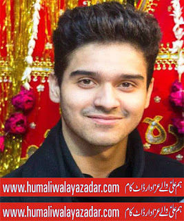ali shanawar nohay 2013 mp3 download