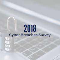 2018 Cyber Breaches Survey