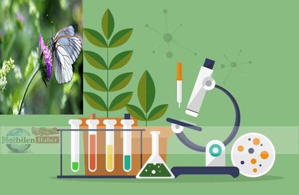 Biyolog Nedir? Biyolog Ne Demek? Biyolog ne iş yapar