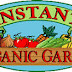 Top Tips For A Thriving Organic Garden