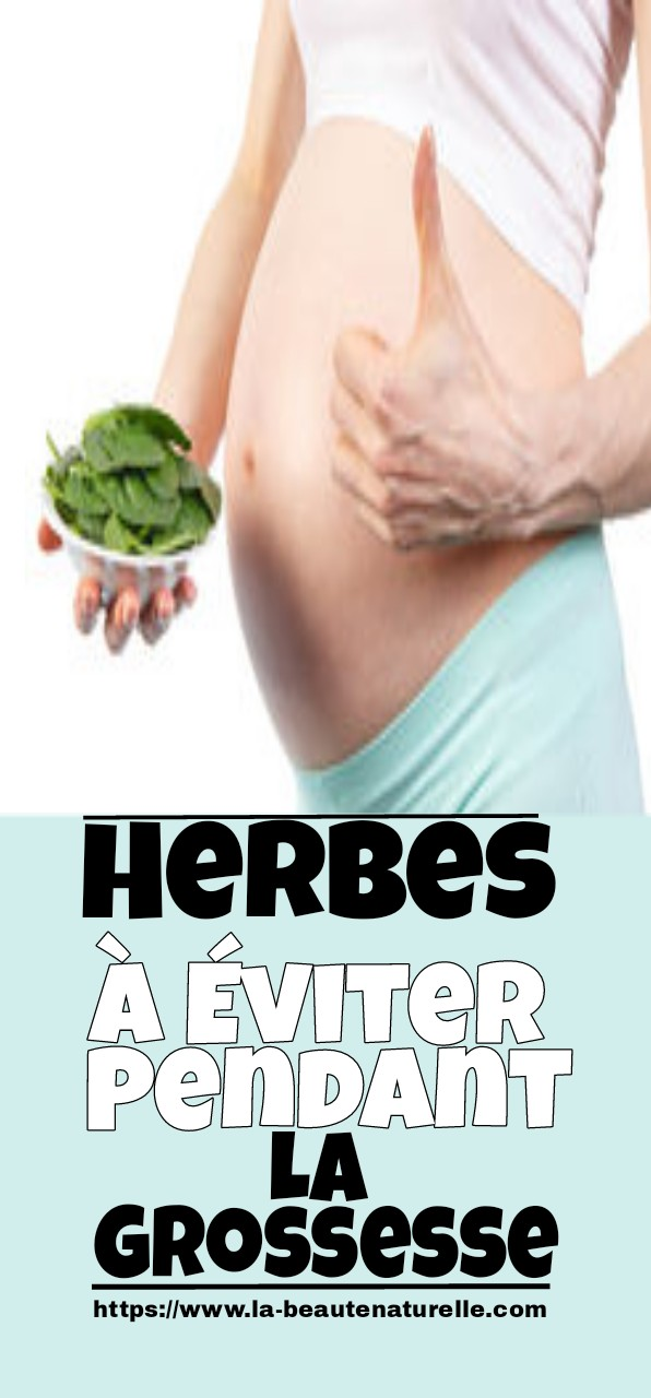 Herbes à éviter pendant la grossesse