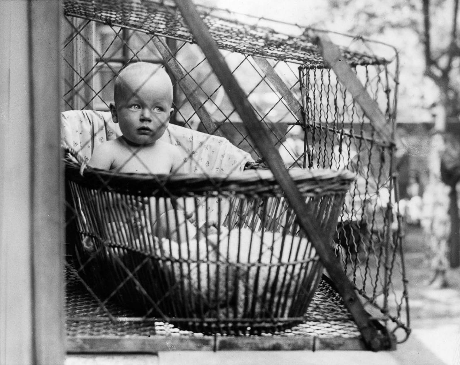 If the cages were in fact secure (though, we assume that about our air-conditioning units, too), maybe these moms were onto something. 1936.