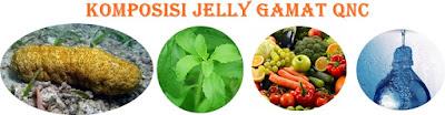 Jelly Gamat QnC ( QnC Jelly Gamat ) - Obat Multi Khasiat dari Teripang Emas