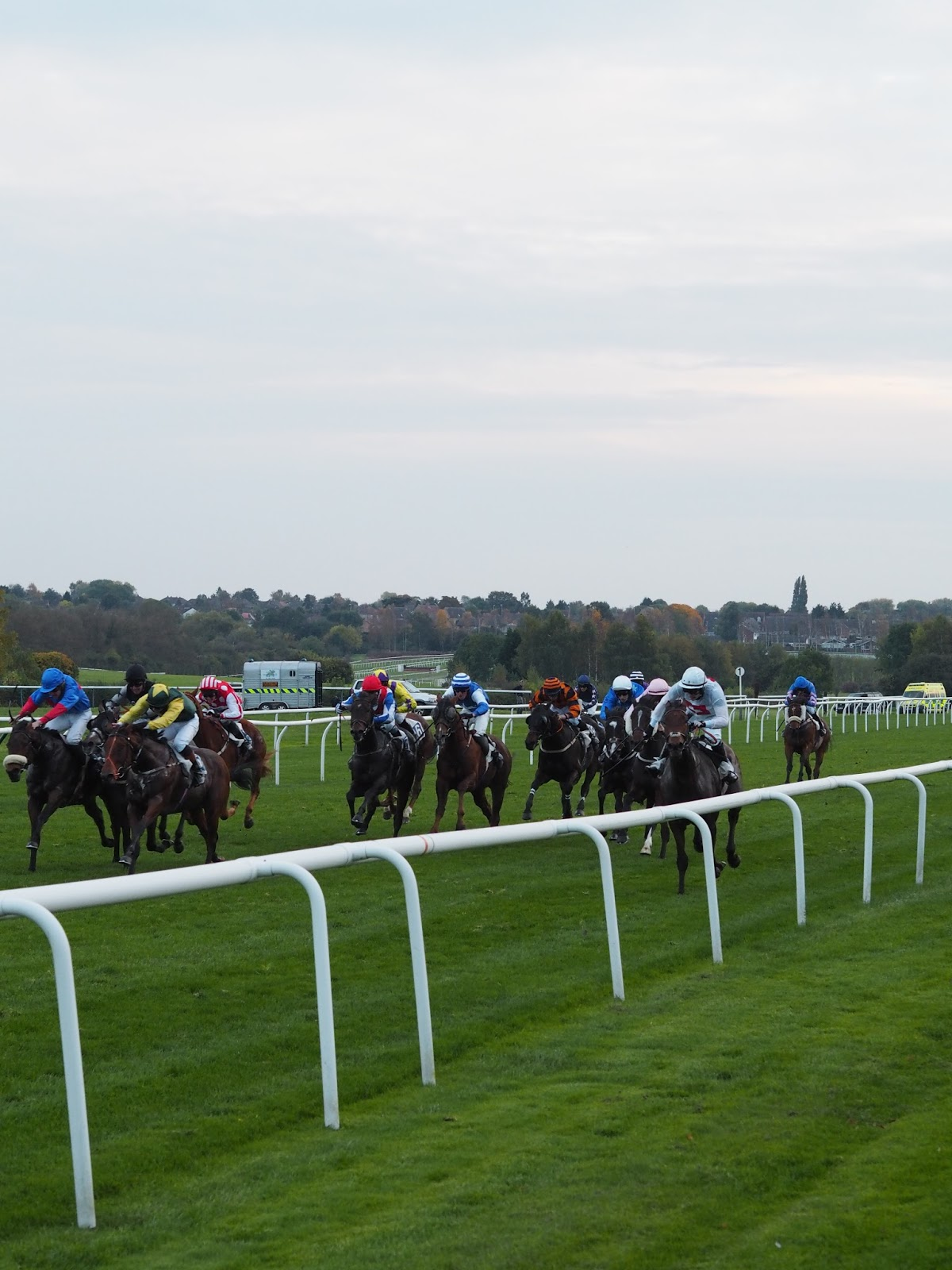 Leicester racecourse review Priceless Life of Mine