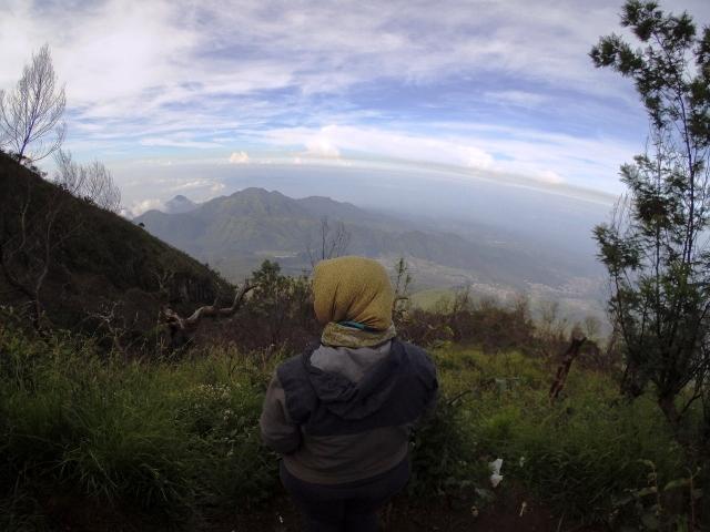 Bagaimana Jalur Pendakian Di Gunung Lawu Untuk Pemula True Story 1 Si Embun