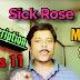 The sick rose 🌹 SAQ /MCQ SUGGESTION