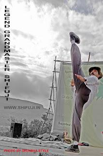 Grandmaster Shifuji Commando Trainer