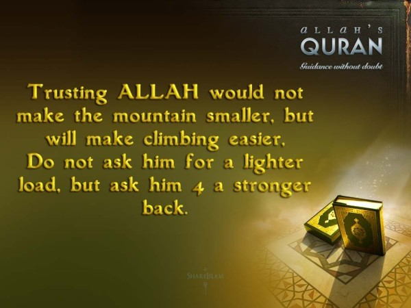 Allah Quotes : Trusting Allah would not make the mountain smaller