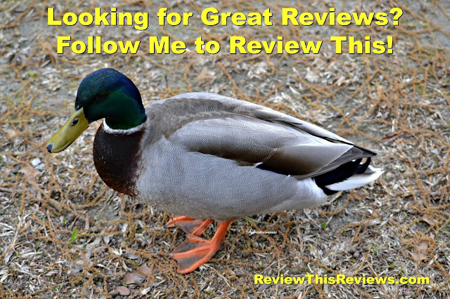 Review This Quick View Home Page - Weekly Features